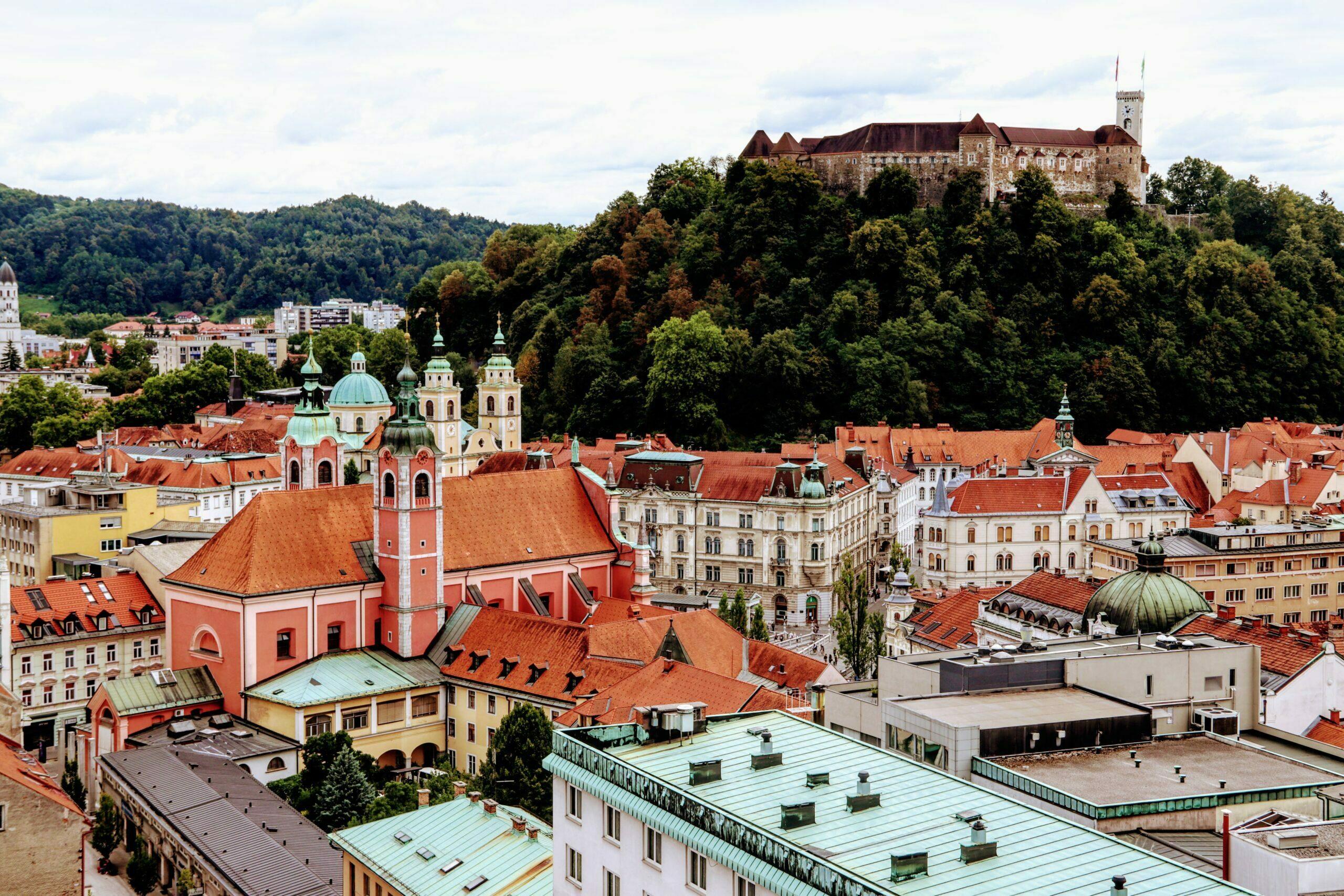 Gastronomía y Vino Taste en Eslovenia